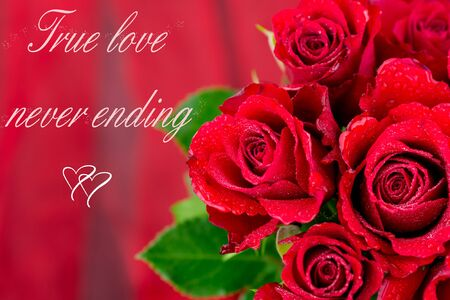 red roses on red background and text