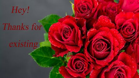 red roses on black background with text