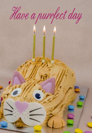 photo of Funny cat birthday cake