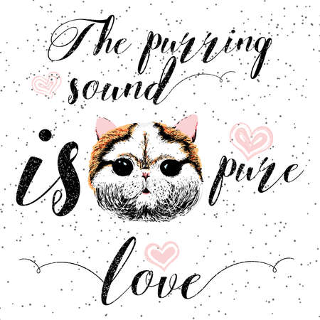 purring: The purring sound is pure love, greeting card and motivational quote for pet lovers with typographic design. Cute friendly smiling cat face with hearts and sparkle. Hand lettered message, calligraphy. Illustration
