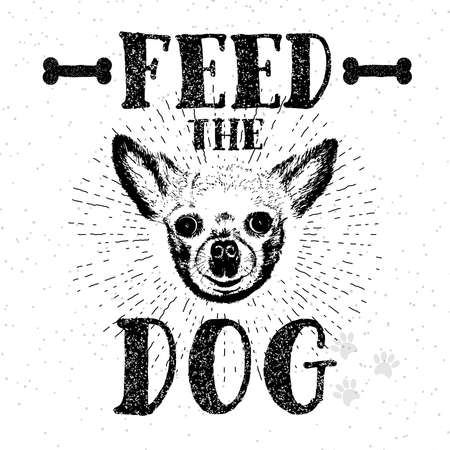 demanding: Feed the dog. illustration with hand drawn lettering and dog on texture background. Inscriptions for dog lovers. Painted brush lettering. Custom typography. Calligraphic. Demanding phrase.