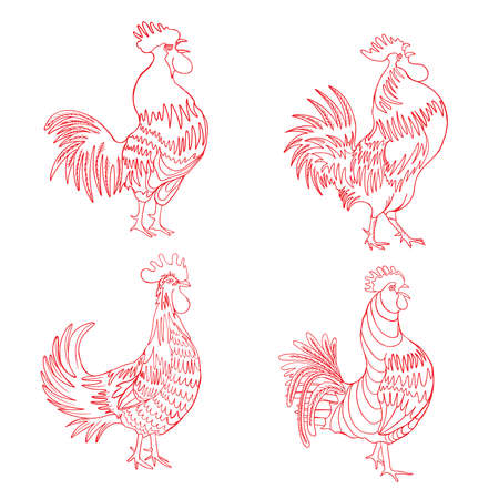 Set of roosters in different directions and poses. Hand drawn cocks. Collection of detailed quality farm birds. Bundle of zodiac symbols for Chinese New year 2017. Vettoriali