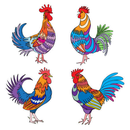 chiken: Set of roosters, cocks, Chinese zodiac illustration collection. emblem, symbol designs bundle. Colourful hand drawing roosters isolated on white. 2017 Chinese Year of the Rooster zodiac emblems. Illustration