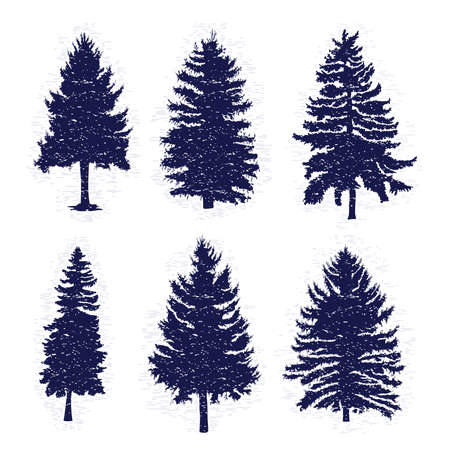 Vector set with pine trees isolated on white background, silhouettes of various woods and fir trees for your design, isolated.
