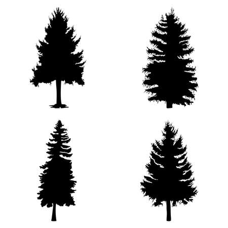 Fir trees set isolated on white background illustration. Collection of black coniferous trees silhouettes. Hand drawing. Stock Illustratie