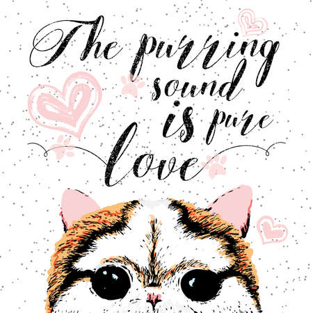 purring: The purring sound is pure love, hand drawn card and lettering calligraphy motivational quote for cat lovers and typographic design. Cute, friendly, smiling, inspirational cat with hearts and sparkle.