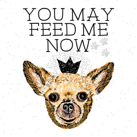 You may feed me now. Sign with cute smiling but hungry dog. Motivational lettering on texture background. Inscriptions for dog lovers. Inspirational typographic calligraphy. Demanding phrase. Illustration