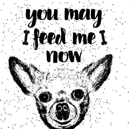 starving: You may feed me now. Sign with cute smiling but hungry dog. Illustration