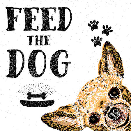 Feed the dog. Vector illustration with hand drawn lettering and dog on texture background. Inscriptions for dog lovers. Painted brush lettering. Custom typography. Calligraphic. Demanding phrase.