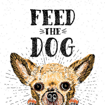 painted dog: Feed the dog. Vector illustration with hand drawn lettering and dog on texture background. Inscriptions for dog lovers. Painted brush lettering. Custom typography. Calligraphic. Demanding phrase.