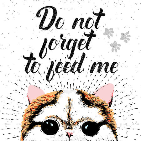 not forget: Do not forget to feed me sign with cute smiling cat. Vector illustration, lettering on texture background. Inscriptions for pet lovers. Painted lettering. Typographic calligraphic. Demanding phrase.