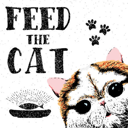 starving: Feed the cat. Vector illustration with hand drawn lettering on texture background. Inscriptions for pet lovers. Painted brush lettering. Custom typography. Calligraphic. Poster with demanding phrase.