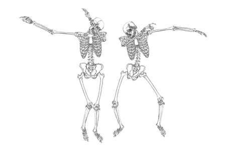 Human skeletons dancing DAB like friends, perform dabbing move gesture in group, posing isolated on white background, vector. Illustration