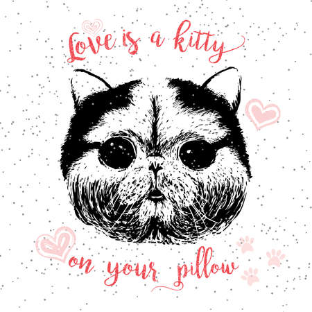 Love is a kitty on your pillow, love quote about pets. Vector outstanding lettering, calligraphy, motivational typography post card. Cute, friendly, smiling, inspirational cat with hearts and sparkle. Ilustração