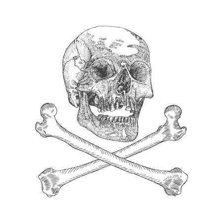 Skull with crossbones. Danger for life and occult witch craft magic symbol. Handmade detailed drawing. Vector illustration. Illustration