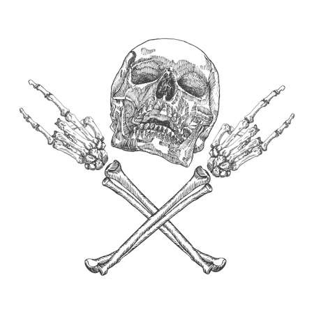 Skull and crossbones hands with gesture of heavy metal, rock and satan. Handmade detailed drawing. Vector illustration. Иллюстрация