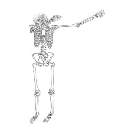 Human skeleton making DAB, perform dabbing dance move gesture, posing on white background. Vector. Illustration