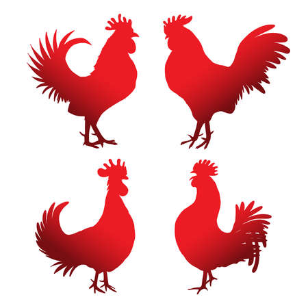 Set of roosters in different directions and poses. Hand drawing of red cocks. Collection of detailed quality farm birds. Bundle of zodiac symbols for Chinese New year 2017. Illustration