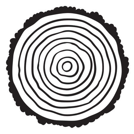 rings on a tree cut: Cross section of tree stump isolated on white background, vector Eps 10 illustration.