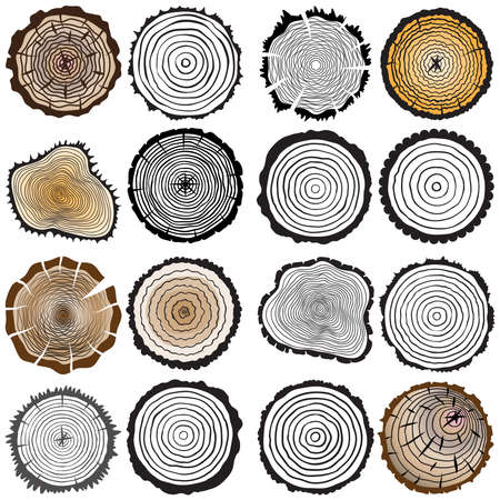 Vector wooden texture set of 16. Tree rings background and saw cut tree trunk. Variety of shapes and color.