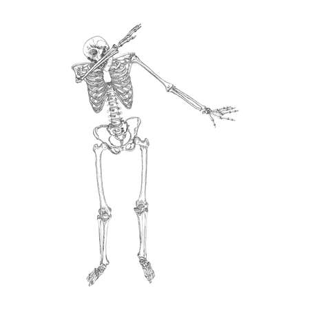Human skeleton making DAB, perform dabbing dance move gesture, posing on white background. Vector. Illustration