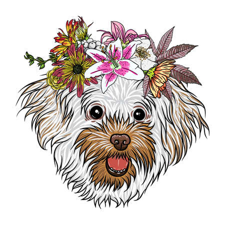Small, cute Bolognese puppy girl wearing exotic floral wreath. Friendly doggy portrait with flowers. Vector illustration.