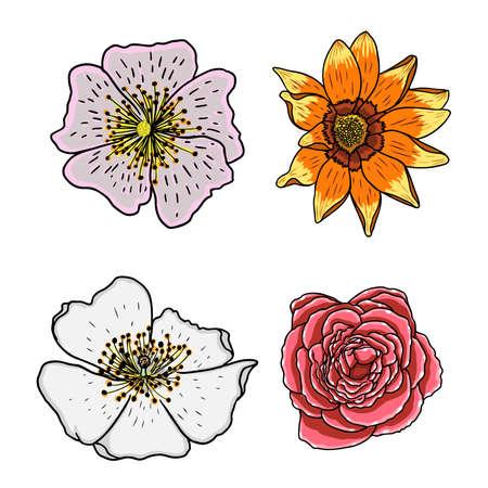 열 대 꽃 집합입니다. 열 대 이국적인 국내 여름 꽃 컬렉션 밝은 색상과 드로잉 스타일. 벡터 일러스트 레이 션.