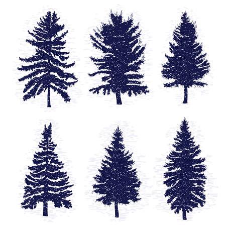 Conjunto de vectores de pinos aislados sobre fondo blanco, las siluetas de varias maderas y abetos para su diseño, aislados. Ilustración de vector