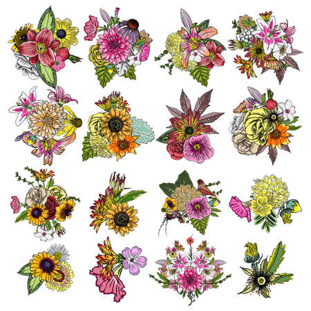 leaved: Flowers. Set of 16 bouquets. Floral collection with various plants. Poppy, roses, sunflower, aster, chamomile. For wedding and women day cards design purpose. Hand drawn illustration, vector. Illustration