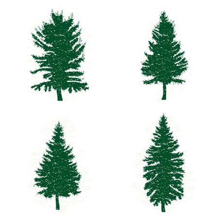 緑の松の木、ベクター グラフィックの異なるシルエットのセット。ビンテージ テクスチャ グランジ モミの木デザイン テンプレートのコレクション