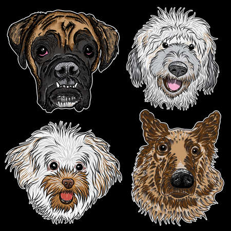 Different type of cartoon dogs. Hand drawn cute puppy. Illustration set with smiling doggy pets. Artistic canine vector characters.Boxer, Labradoodle, Bolognese, German Shepherd. Ilustração