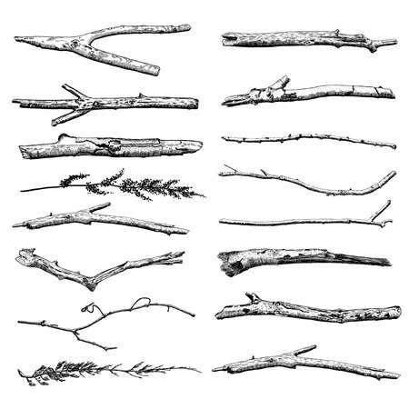 Conjunto de Madera a la deriva, tinta dibujado colección de elementos de diseño rústico planta baja mano. ramas de los árboles secos y ramas de madera. Vintage dibujos a tinta clásicos altamente detalladas lían arte en estilo grabado. Vector. Ilustración de vector