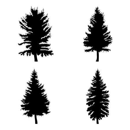 Sparren geplaatst die op witte illustratie worden geïsoleerd als achtergrond. Inzameling van zwarte naaldboomensilhouetten. Handtekening. Stock Illustratie