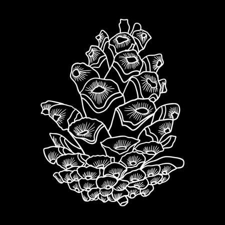 松コーンの黒と白の現実的なイラストを描くベクトル手、オープンシェルを備えた fir コーン。