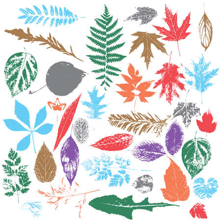 leaf silhouettes in color
