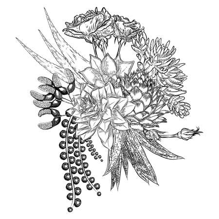 Composition of succulents, cactus, green plants, botanical drawing. Black white handdrawn bouquet. Flesh tattoo concept. Coloring book page. All flowers are editable separately. Vector.
