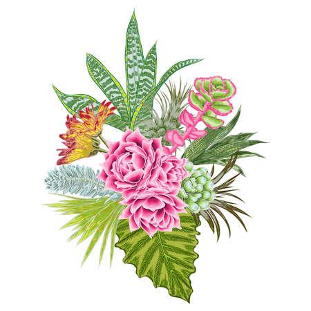 Elegant ikebana bouquet watercolor imitation of succulent, rose, cactus , air plant, Bromelia, aloe, vera, Houseplant  set. Wedding pastel flowers. All elements are made of real plants and editable. Ilustração