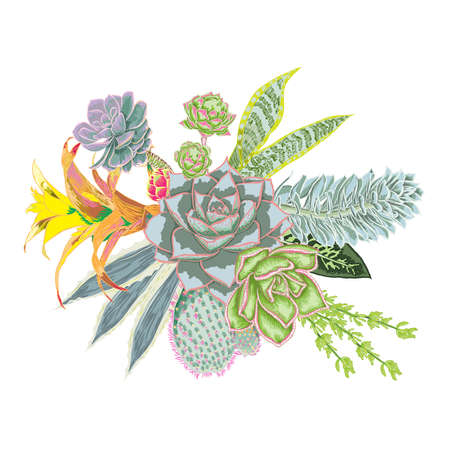 Elegant ikebana bouquet watercolor imitation of succulent, rose, cactus , air plant, Bromelia, aloe, vera, Houseplant set. Wedding pastel flowers. All elements are made of real plants and editable.