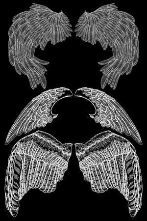 Hand drawn vintage wings set. Sketch collection vector.