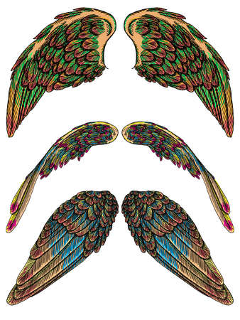 7c3962e5f Set of angel or bird colourful wings. Colorful abstract hand drawing sketch,  isolated illustration