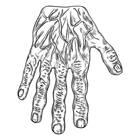 Scary zombie monster hand, hand drawn. Isolated on white background, for Halloween. Vector. Banque d'images - 124063138