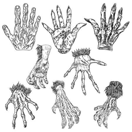 Engraving monster hand set, zombie, werewolf, dragon or vampire palm hands with long nails in attack gesture. Vector.