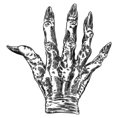 Scary zombie monster hand, hand drawn. Isolated on white background, for Halloween. Vector. Çizim