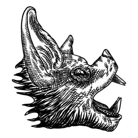 Fledermauskopf- oder Gesichtszeichnung. Gotische Illustration von Monstern für das Halloween. Hexerei Magie, okkulte Attribute dekorative Elemente. Zeichnung von Nachtwesen.