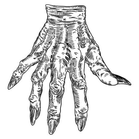 Scary zombie monster hand, hand drawn. Isolated on white background, for Halloween. Vector.  Illustration
