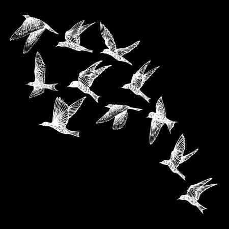 Hand drawn strokes birds, flock. Drawing sketch. On black background. Inspirational body flash tattoo ink.  Vector. 일러스트