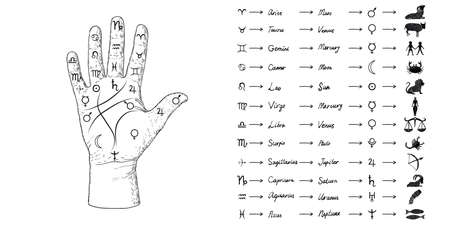 Fortune teller hand with Palmistry diagram and zodiac constellations. Magic alchemy spirituality symbol. Hand drawn sketchy palm reading with mystic and occult hand drawn esoteric symbols. Vector. Stock Illustratie