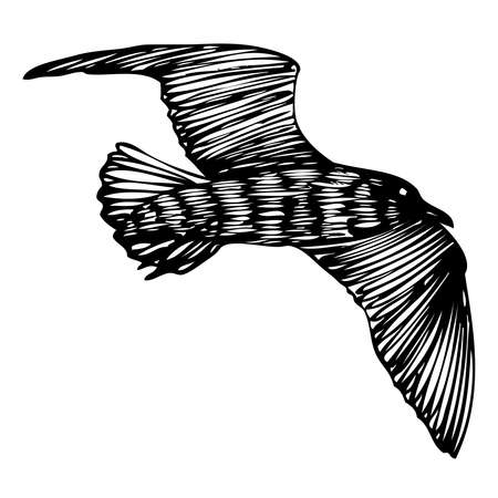 Black seagull, hand drawn strokes marine sea gull bird. Drawing sketch. Inspirational body flash tattoo ink for sailor. Nautical vector. Ilustração