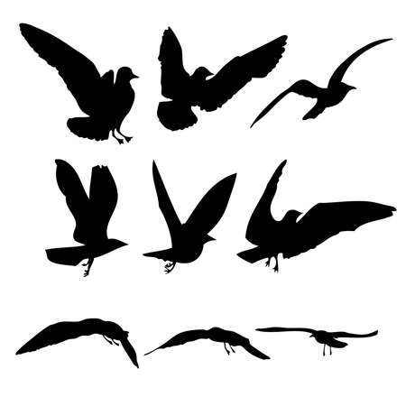 Silhouette of flying seagulls birds on white background. Inspirational sail body flash tattoo ink of sea gulls. Vector.