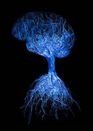 Concept human brain with blue glowing connection made from roots of tree on black background. Stock Photo